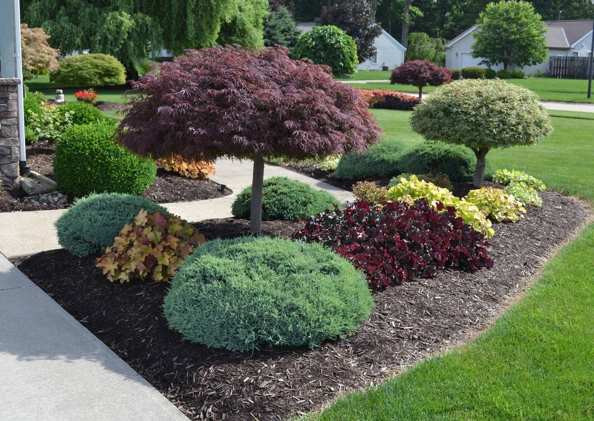 Dwarf Fruit Trees For Landscaping Randolph Indoor And Outdoor Design