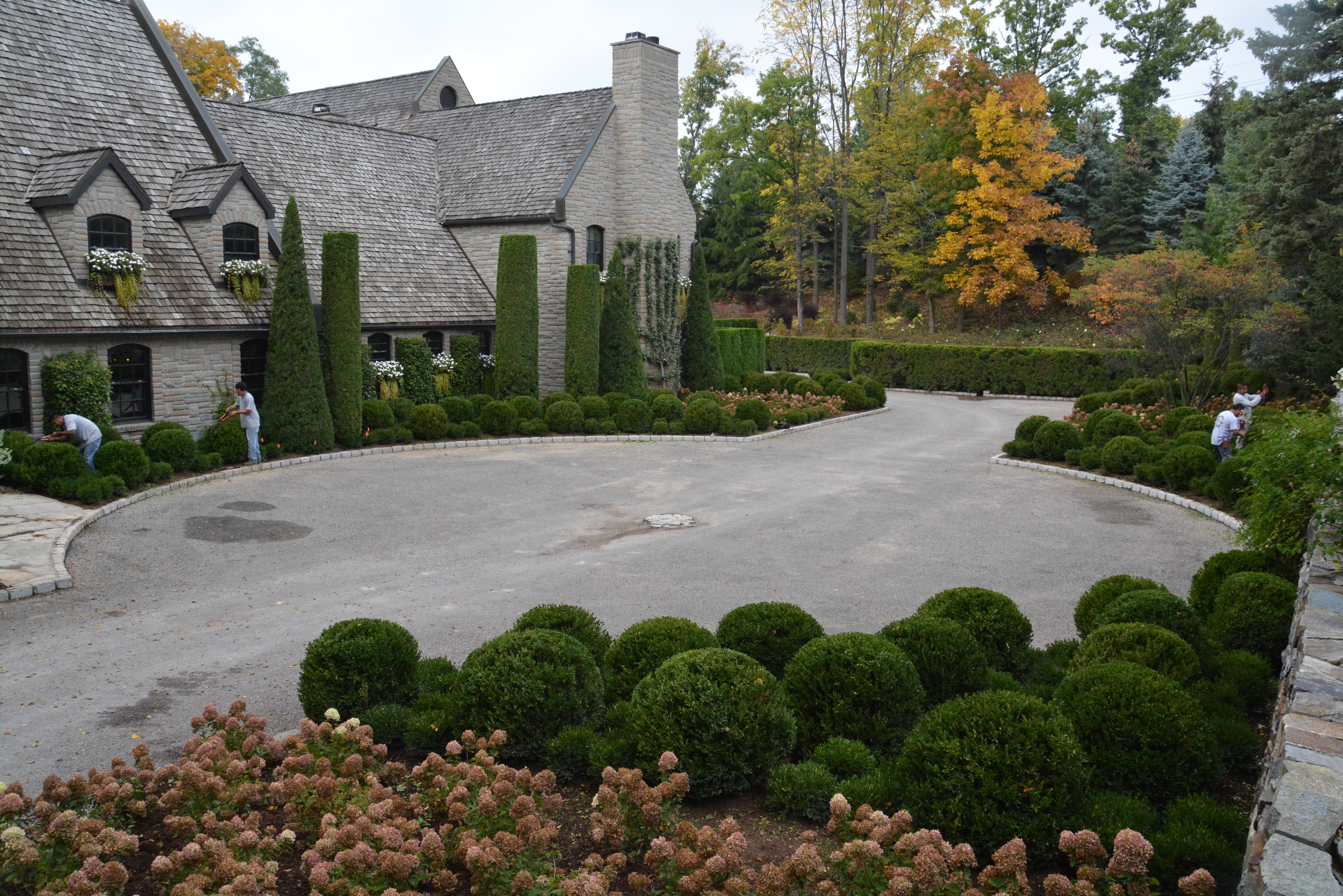Boxwood Landscaping Ideas — Randolph Indoor and Outdoor Design