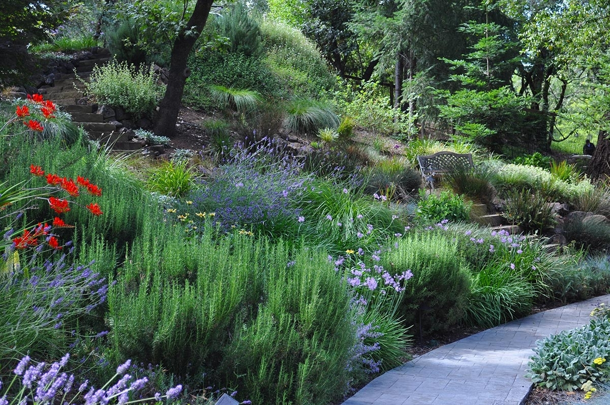 Creative Hillside Landscape Ideas — Randolph Indoor and ... on Steep Sloping Garden Ideas id=99637