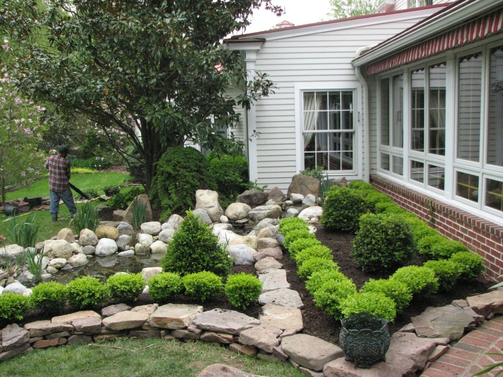 Japanese Boxwood Landscaping Randolph Indoor And Outdoor