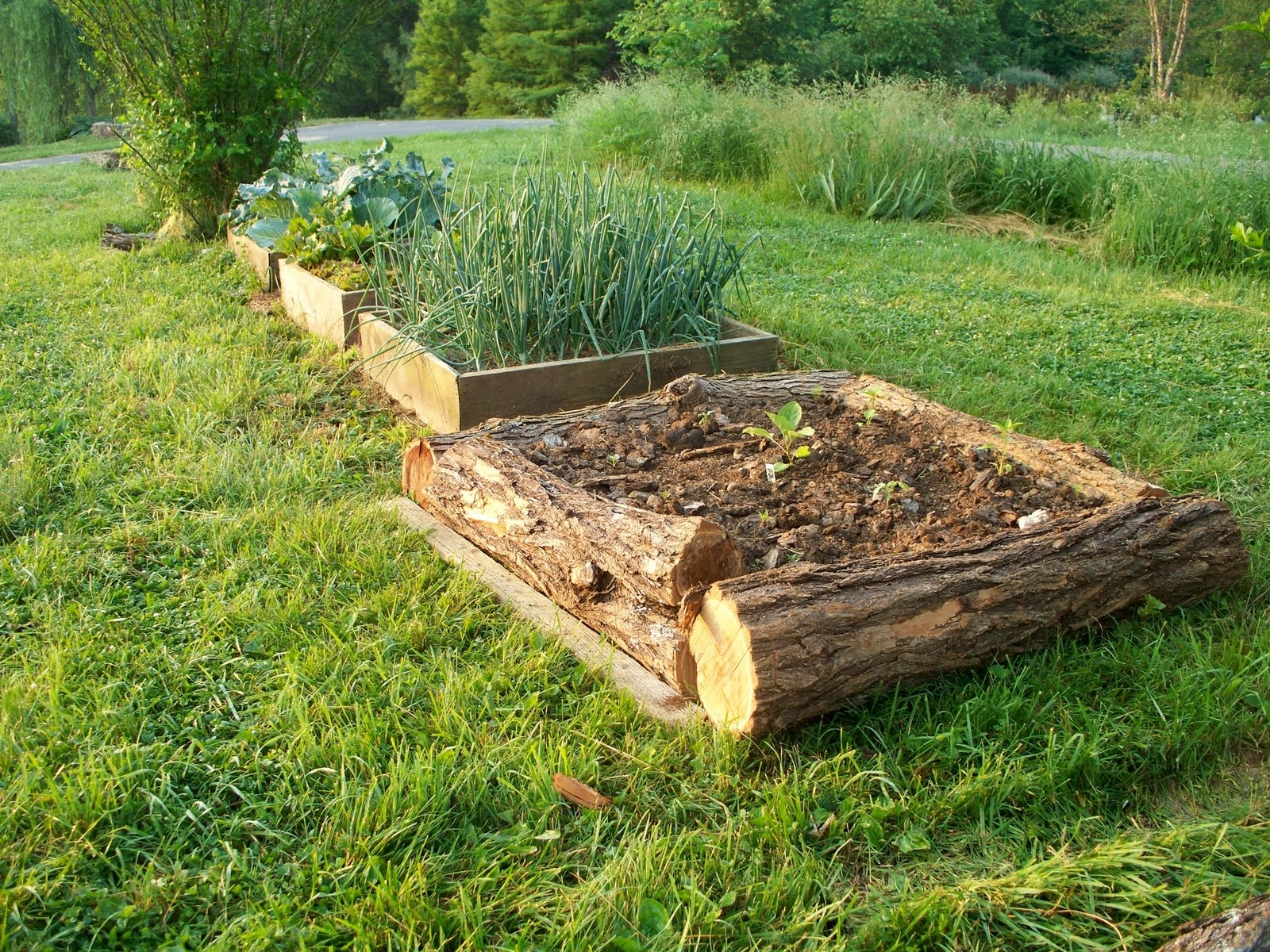 Landscaping Logs For