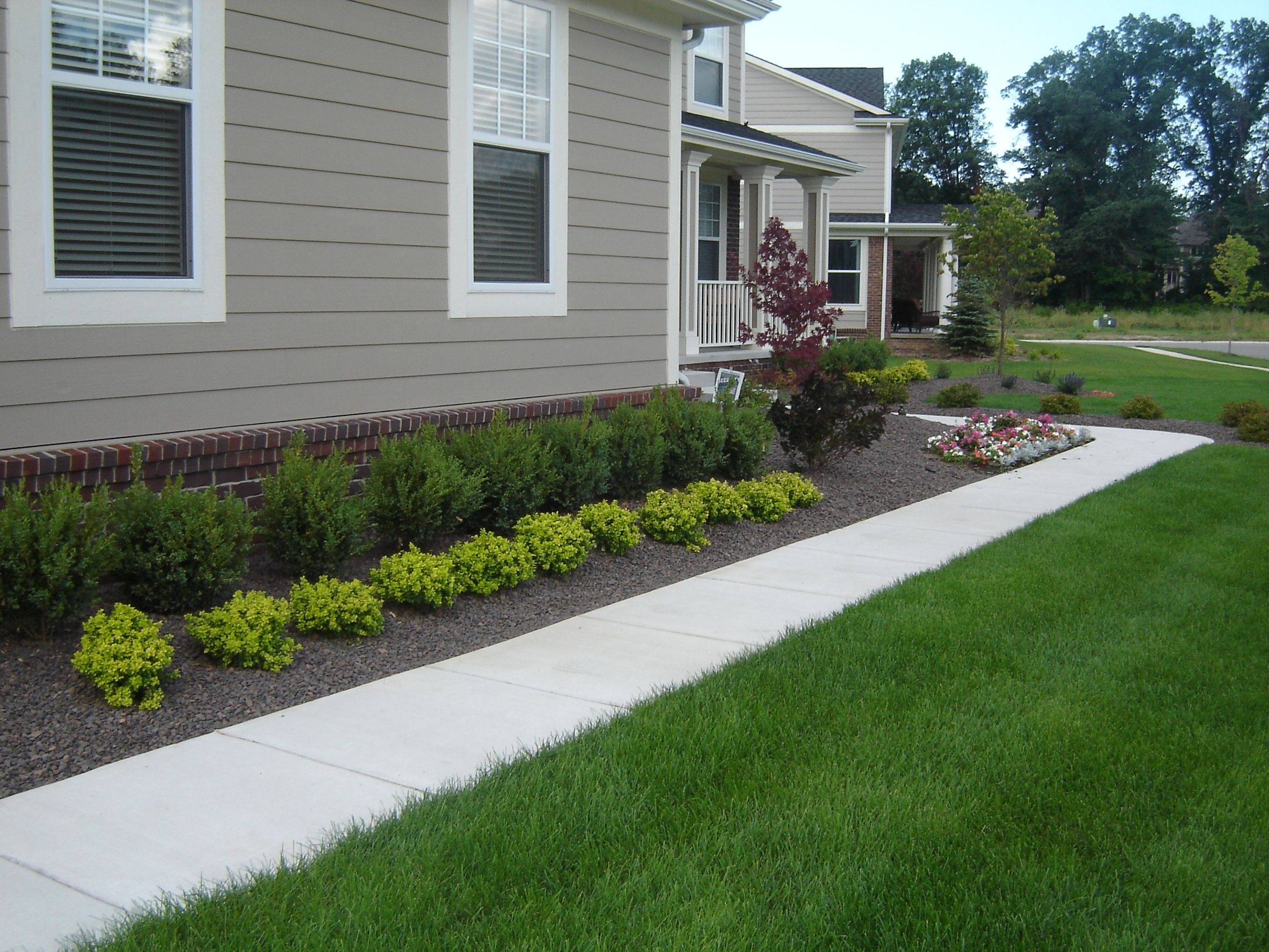 Landscaping With Boxwood Bushes Randolph Indoor And