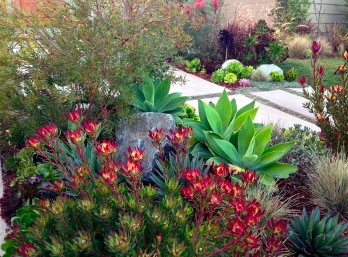 Landscaping Ideas With Succulents And Garden Buddhas Randolph