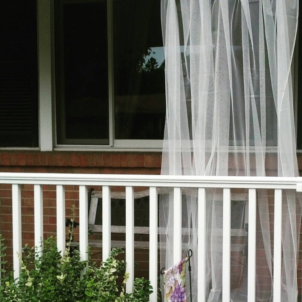 Commercial Mosquito Netting For Porch Randolph Indoor