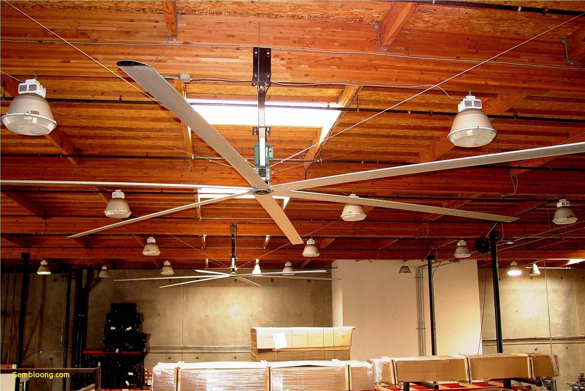 Different Belt Driven Ceiling Fan And Other Styles
