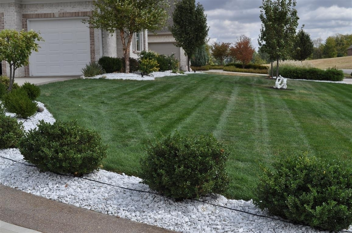 Where Would I Buy Large White Rocks For Landscaping
